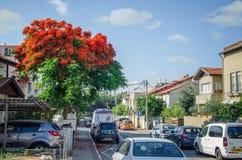 Fahren der Straße mit parkendes Auto in der Häuschennachbarschaft Stockbilder