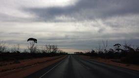 Fahren des Nullabor auf einer Landstraße im australischen Hinterland Stockfoto