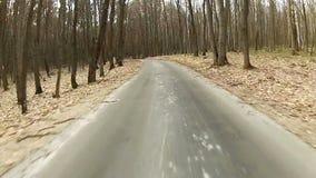 Fahren entlang Waldweg stock video footage