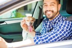Fahren mit dem besten Begleiter stockbilder