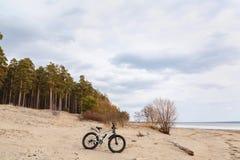 Fahren Sie, fatbike auf dem See, Wald rad lizenzfreie stockbilder