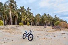 Fahren Sie, fatbike auf dem See, Wald rad stockbild