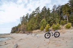 Fahren Sie, fatbike auf dem See, Wald rad stockfotografie