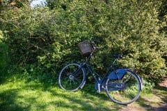 fahren Sie mit dem Korb rad, der nahe schönen grünen Büschen geparkt wird lizenzfreies stockfoto