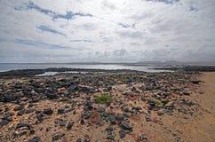 Fahren Sie nahe EL Cotillo, Kanarische Insel Fuerteventura, Spanien die Küste entlang Stockbilder