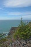 Fahren Sie nahe Feuersteinkante, Rotholz-Nationalpark, CA die Küste entlang Stockfoto