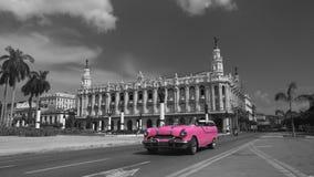 Fahren Sie Rosa lizenzfreie stockfotos