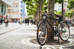 Fahren Sie Stellung nahe einem platan Baum in Frankfurt, Deutschland rad Lizenzfreie Stockbilder
