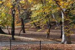Fahren Sie Weg unter Herbstbäumen auf Central Park, New York rad Lizenzfreie Stockfotos