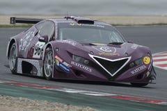 Fahrer Roberto Rayneri Ausdauer GT lizenzfreie stockbilder
