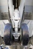 Fahrgestell auf Kämpfer lizenzfreie stockbilder
