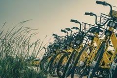 Fahrräder, die im Campus parken stockfotos