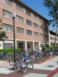 Fahrräder an einer Hochschule Stockbild