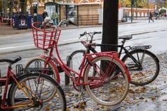 Fahrräder im Regen Lizenzfreie Stockfotos