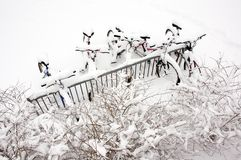 Fahrräder nach dem Schneesturm. Stockbild