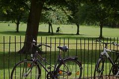 Fahrräder und Radfahrer auf Jesus Green, Cambridge, England Stockfotografie