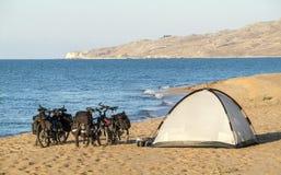 Fahrräder und Zelt auf Sandstrand Stockbilder