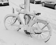Fahrrad abgedeckt im Schnee Lizenzfreies Stockbild