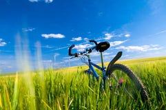 Fahrrad auf dem Feld Lizenzfreie Stockbilder