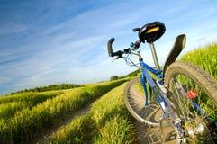 Fahrrad auf dem Sommerfeld Stockfoto