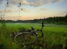 Fahrrad auf Feld Lizenzfreies Stockfoto