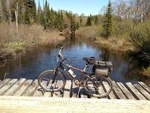 Fahrrad auf Protokollierungsbrücke über Fluss Stockfotografie