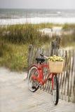 Fahrrad, das am Zaun sich lehnt Stockbild