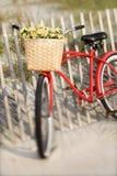 Fahrrad, das am Zaun sich lehnt stockfotografie