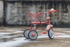 Fahrrad der Kinder stockfotos