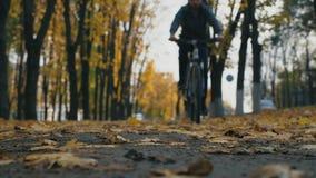Fahrrad des jungen Mannes Reitdurch Stadtpark unter bunten B?umen am Herbsttag Sportliches Kerlradfahren im Freien Gelb trocknen  stock video