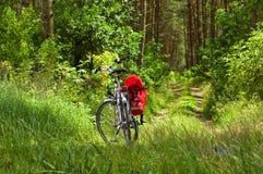 Fahrrad in einem Wald Stockfotografie