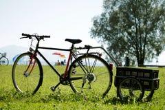 Fahrrad in einer Wiese Stockfotografie