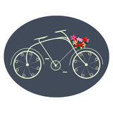 Fahrrad für Damen Lizenzfreie Stockfotos