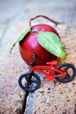 Fahrrad-Frucht Lizenzfreie Stockfotos