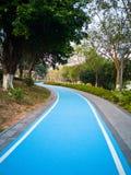 Fahrrad Greenway mit grünen Bäumen Lizenzfreies Stockbild