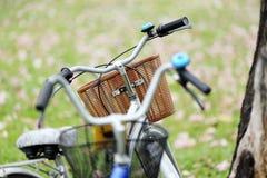 Fahrrad im Garten Stockbilder