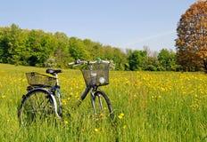 Fahrrad im Gras Stockfotos