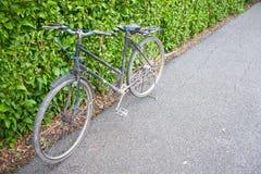 Fahrrad im Park. Stockbild