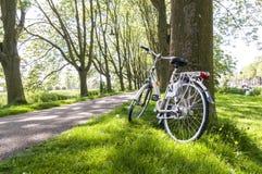 Fahrrad im Park Lizenzfreie Stockfotografie