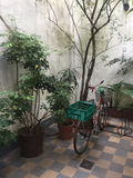 Fahrrad im Patio Lizenzfreie Stockfotos