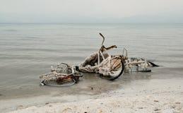 Fahrrad im Toten Meer Stockbilder