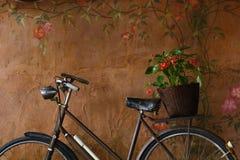 Fahrrad mit Blumenkorb Stockfoto
