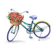 Fahrrad mit Korb der roten Rosen lizenzfreie abbildung