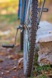 Fahrrad steht auf dem Gras lizenzfreie stockfotografie