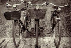 Fahrrad-Trio in Italien Stockfoto