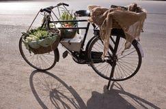Fahrrad u. Gemüse Lizenzfreies Stockbild