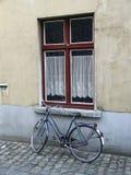 Fahrrad und Fenster Stockfotografie