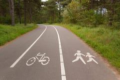Fahrrad und gehender Weg im Wald Lizenzfreie Stockfotos