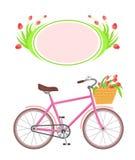 Fahrrad- und Rahmenblumen Lizenzfreie Stockfotos