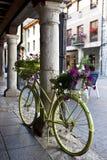 Fahrrad und Vase Lizenzfreie Stockfotografie